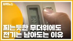 [자막뉴스] 찌는듯한 무더위에도 전기는 남아도는 이유