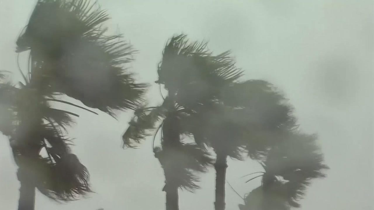 [날씨] 태풍 영향 전국에 비바람...동해안 300mm 호우