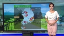 [날씨] 낮 더위 기승, 서울 폭염주의보...동해안 ...