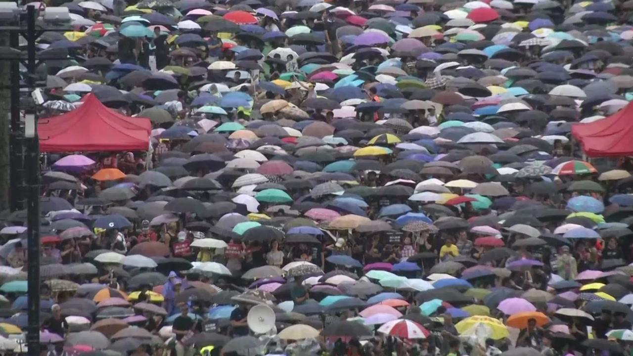 [뉴스TMI] 흔들리는 홍콩, 세계 경제 향한 검은 날갯짓 될까?...'블랙 스완'이란
