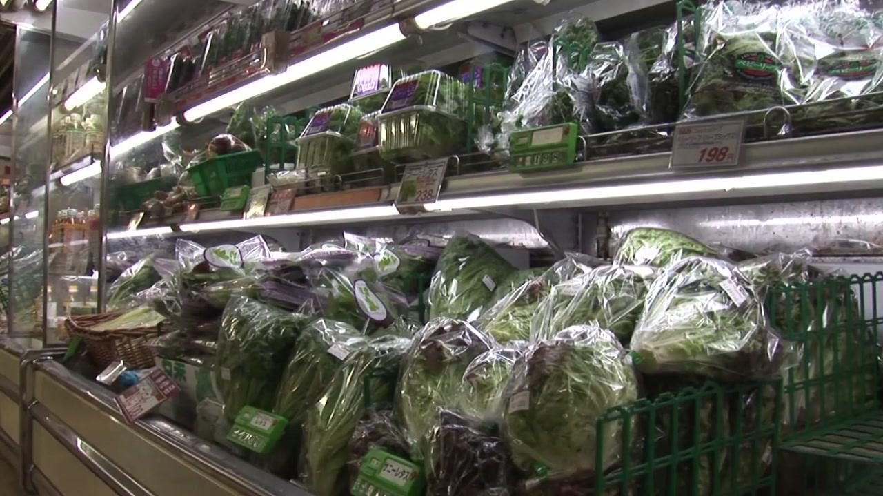일본산 17개 품목 수입식품 안전검사 2배 강화