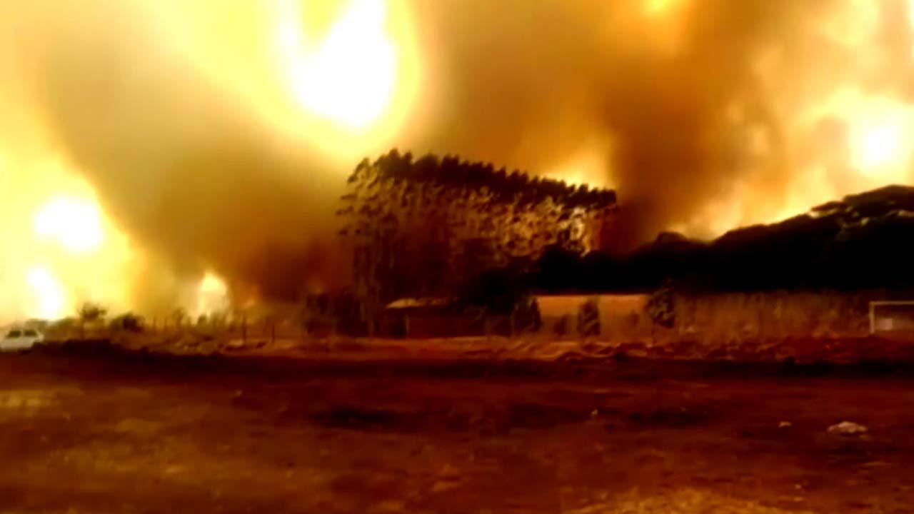 '지구의 허파' 아마존 대규모 산불 확산...전세계 우려
