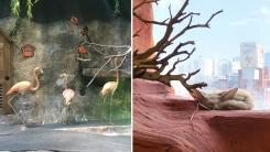 [반나절] 밤이 와야 안심하는 실내 동물원의 동물들