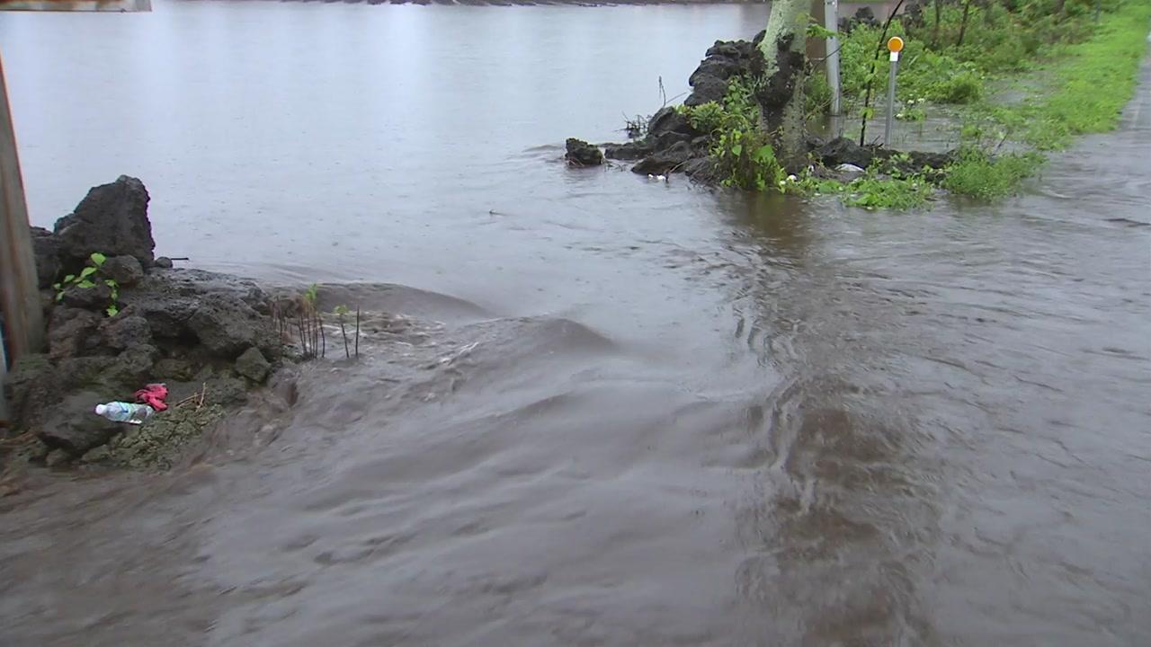 제주 또 기습 폭우...도로·농경지 침수 피해