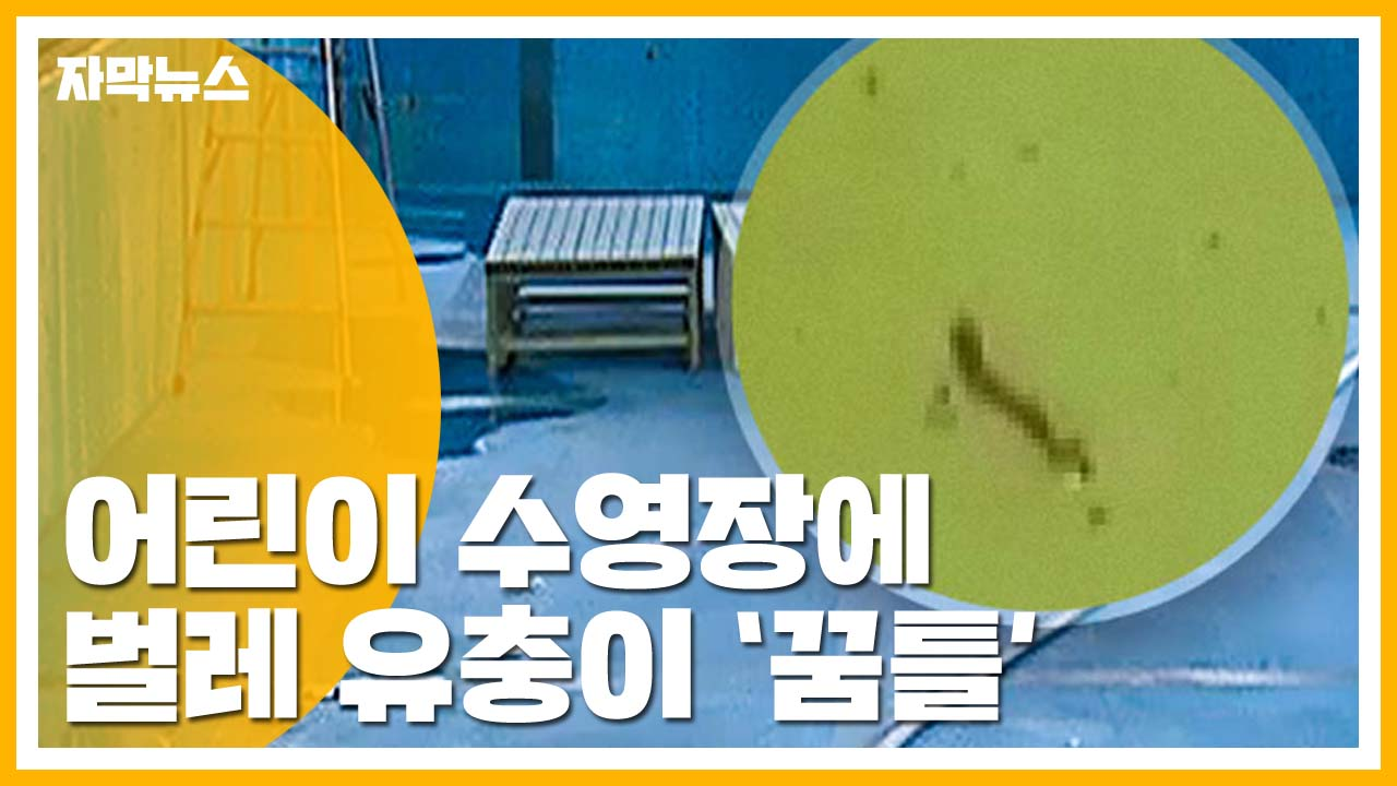 [자막뉴스] 어린이 수영장에 벌레 '꿈틀'...경악