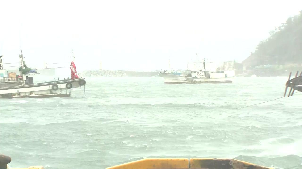 [태풍 위치] 태풍 '링링', 충남 서해안 따라 북상...정전 등 피해