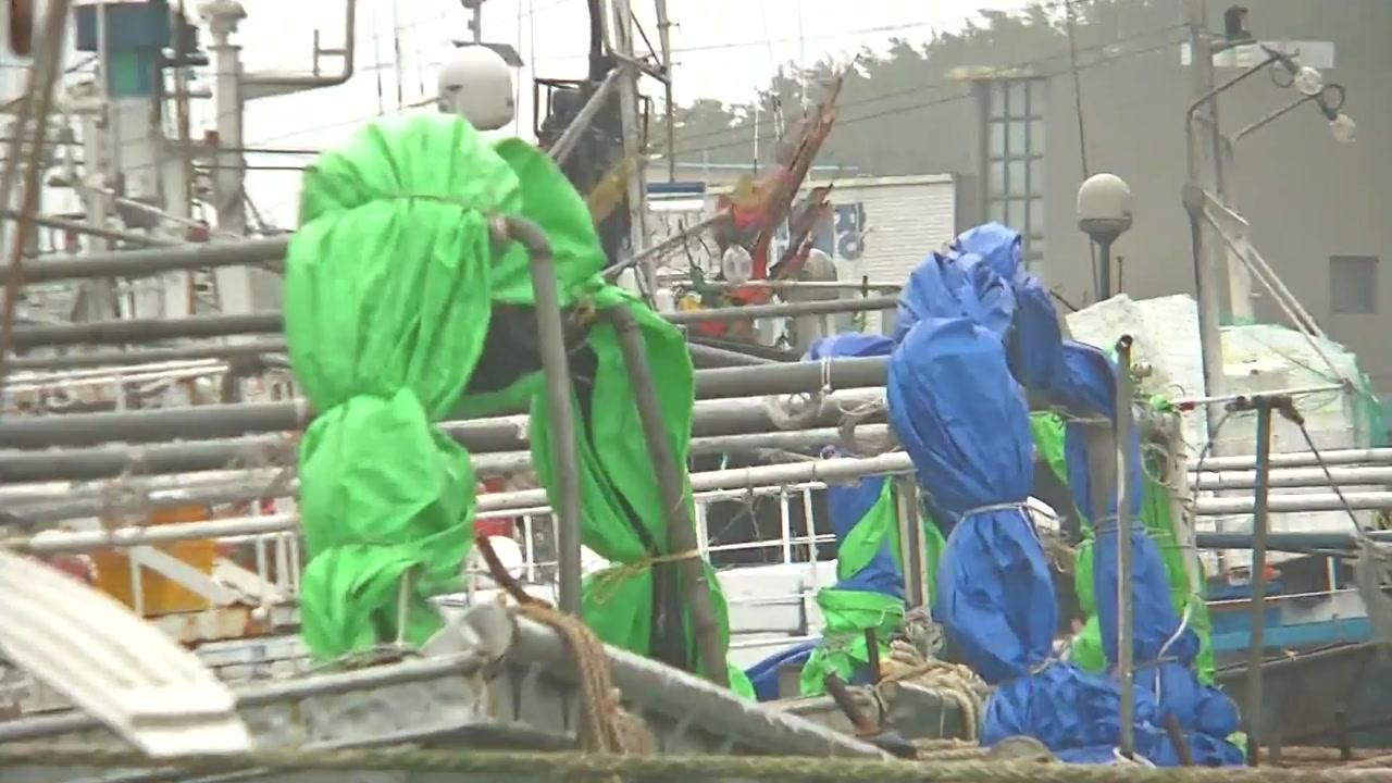 [태풍 위치] 태풍 '링링' 충남 태안 최근접...갈수록 피해 늘어