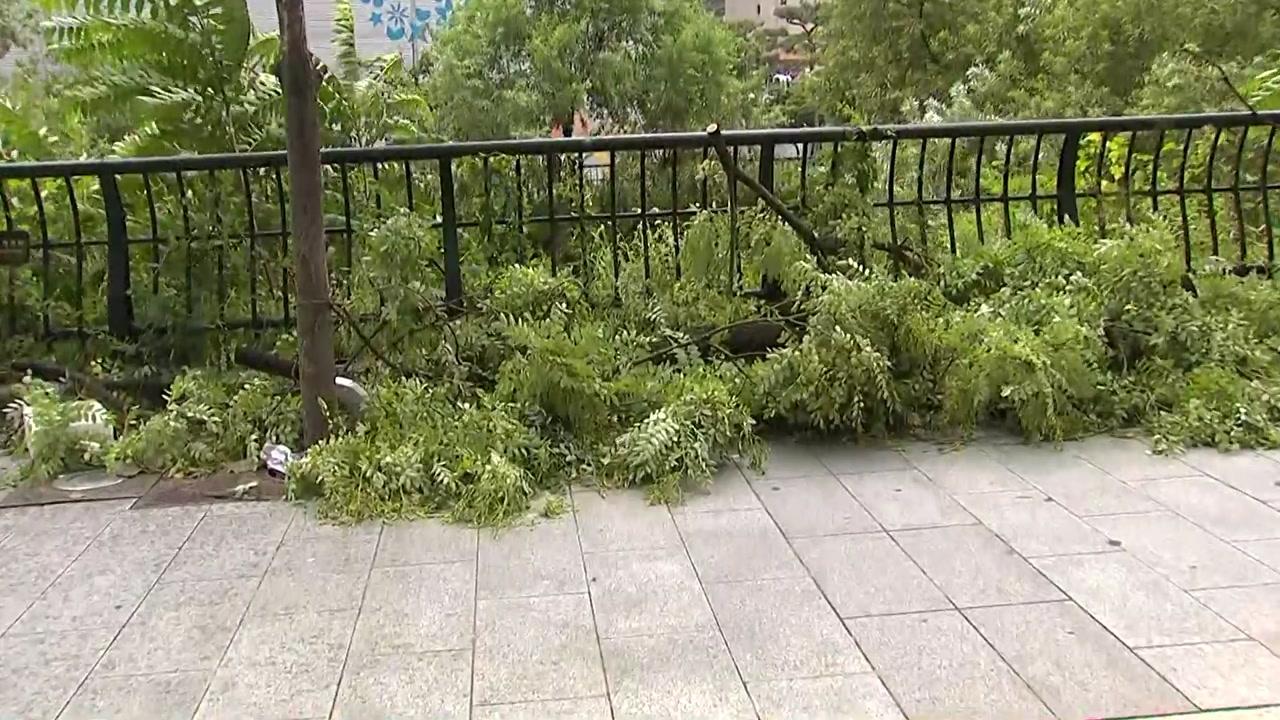 [태풍 위치] 태풍 '링링' 수도권 강타...이 시각 서울 도심