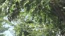 [날씨] 오늘 맑고 큰 일교차...남부 곳곳 빗방울