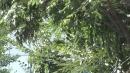 [날씨] 오늘 쾌청한 하늘...낮 동안 늦더위