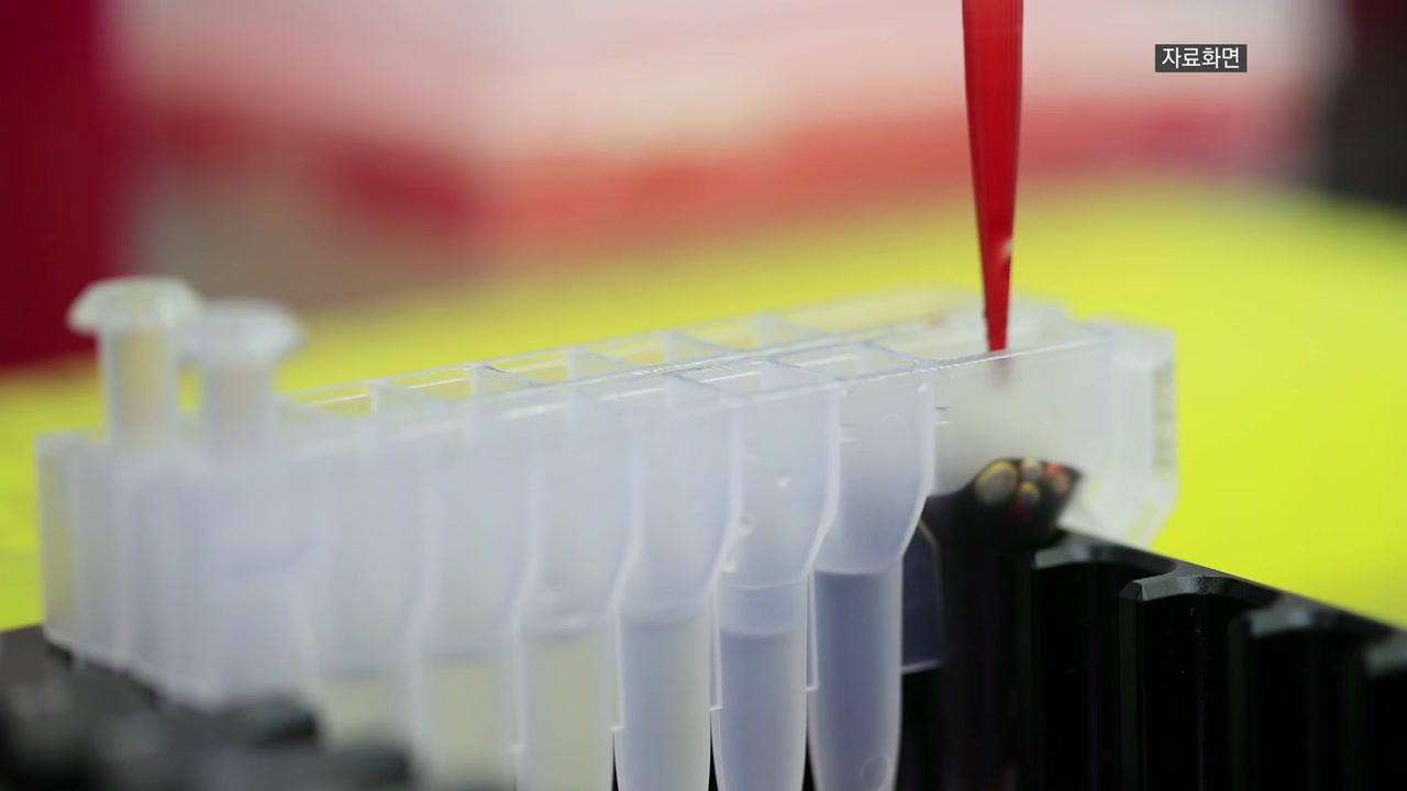 '치사율 100%' 아프리카돼지열병, 백신 개발 왜 어렵나?