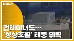 [자막뉴스] 컨테이너가 맥없이...'상상초월' 태풍 위력