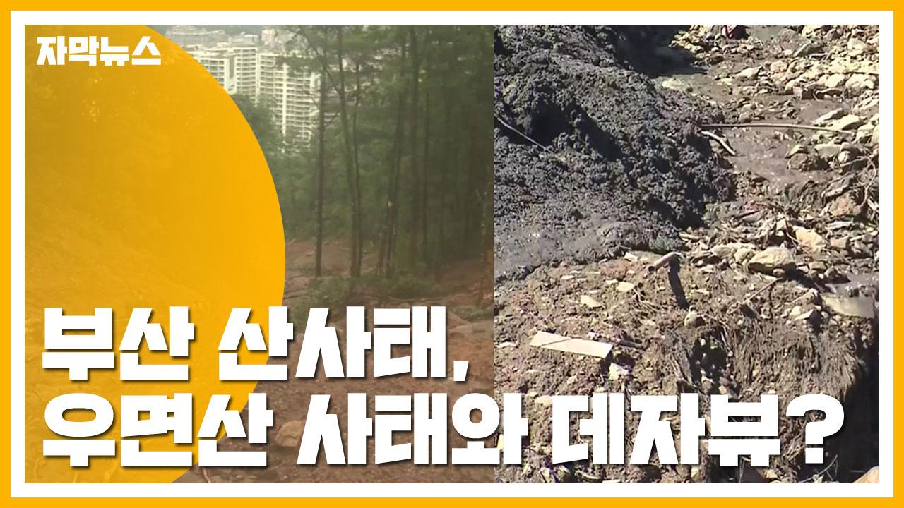 """[자막뉴스] 부산 산사태, '우면산 사태' 데자뷰...""""막을 수 있었다"""""""