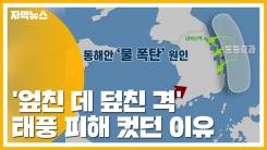[자막뉴스] '엎친 데 덮친 격' 태풍 피해 컸던 이유