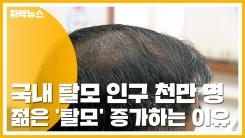 [자막뉴스] 탈모 인구 천만 명 추산...나도 젊은 '탈모' 환자?