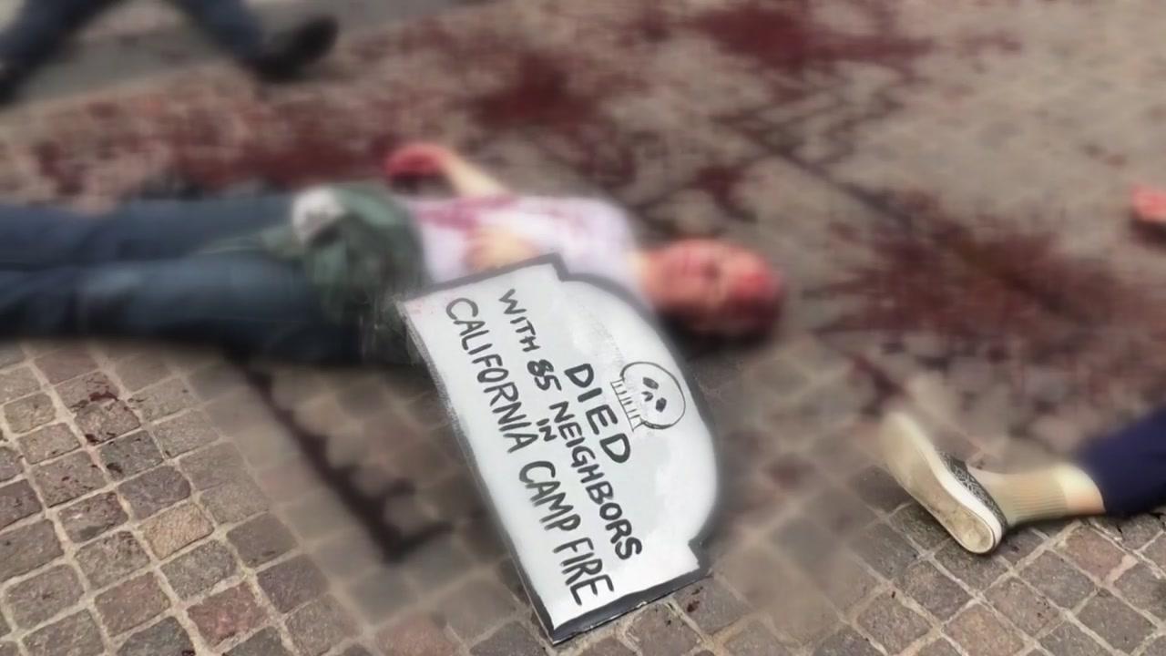 """""""비상사태""""...미·유럽서 기후변화 시위 물결"""