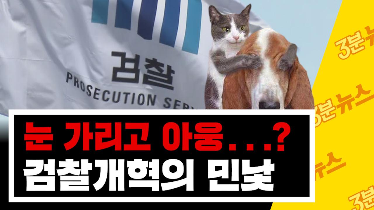 [3분뉴스] '눈 가리고 아웅'? 검찰 개혁 끝까지 지켜봐야