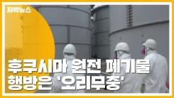 [자막뉴스] 후쿠시마 원전 방사성 폐기물 유실...행방 오리무중