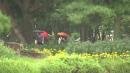 [날씨] 오늘 영동·남부 가을비...낮 동안 선선
