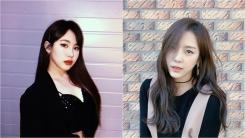 박지민·예원, 악플 피해 사례 공개…악성 댓글로 고통받는 스타들