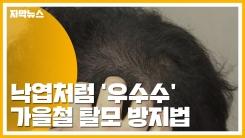 [자막뉴스] 낙엽처럼 '우수수'...가을철 탈모 방지법