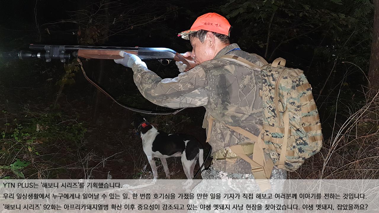 [해보니 시리즈 92] 아프리카돼지열병을 막아라! 멧돼지 사냥 따라가 보니