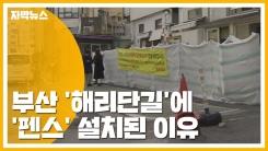 [자막뉴스] 부산 '해리단길'에 어른 키 높이 '펜스' 설치된 이유