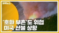 [자막뉴스] 무서운 기세로 '호화 부촌'도 위협...미국 산불 상황