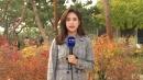 [날씨] 주말, 서쪽 미세먼지↑...단풍 가득한 고궁