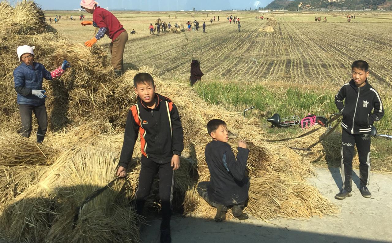 북한 주재 영국대사가 공개한 최근 북한의 모습들(사진)