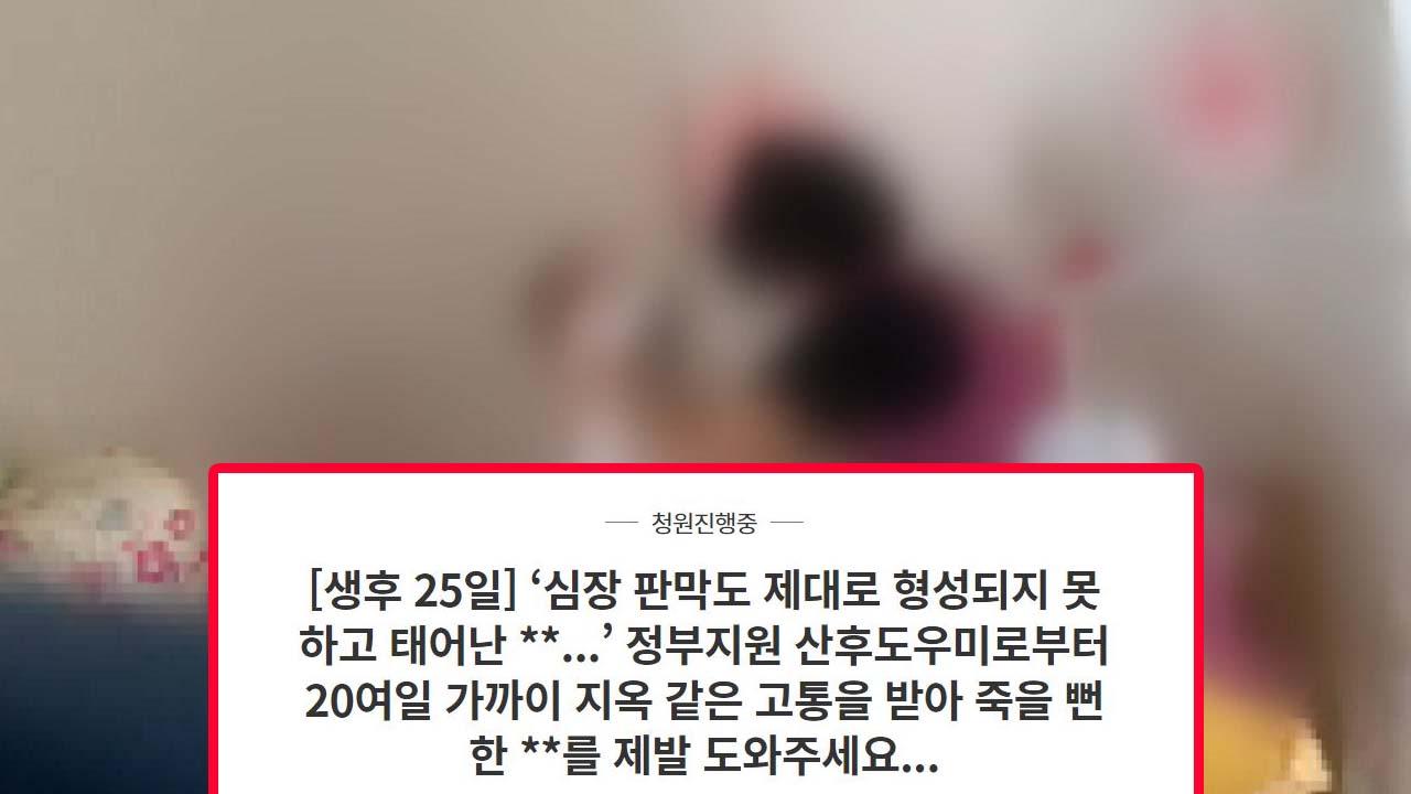 """생후 25일 신생아 학대한 산후도우미...""""강력 처벌 해달라"""" 靑 청원"""