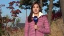 [날씨] 맑고 선선한 늦가을...휴일 밤부터 전국 비