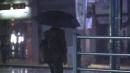 [날씨] 휴일 흐리고 밤부터 비...늦가을 정취 가득
