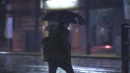 [날씨] 밤부터 전국 비...새벽까지 돌풍·벼락 유의