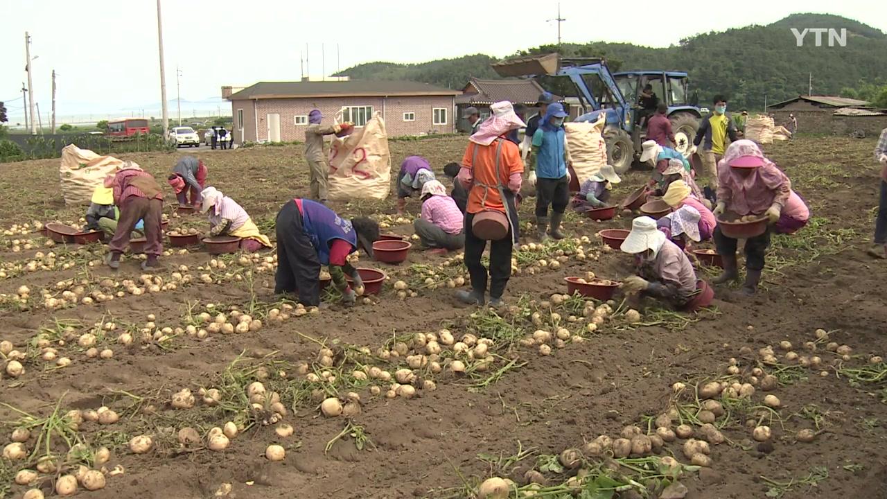 북한 농사 돕는다...농자재 지원 준비 끝