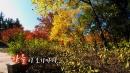 [영상] 가을이 오기까지...