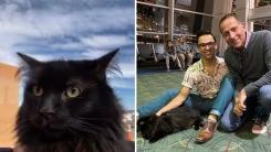 5년 전 잃어버린 고양이 2천km 떨어진 지역에서 발견