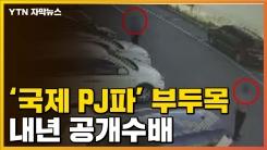 [자막뉴스] '국제 PJ파' 부두목 얼굴 내년 공개