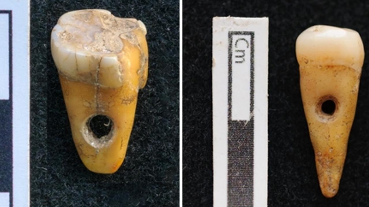 터키서 8,500년 전 '사람 치아 장신구' 유물 발견