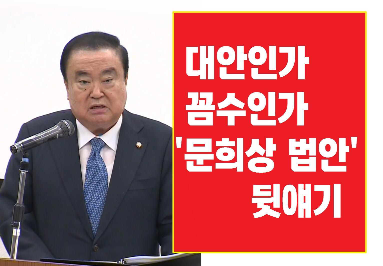 [와이파일] 대안인가 꼼수인가...'문희상 법안' 뒷얘기