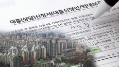 9억 초과 주택 '대출 옥죄기'...현장 반응은?