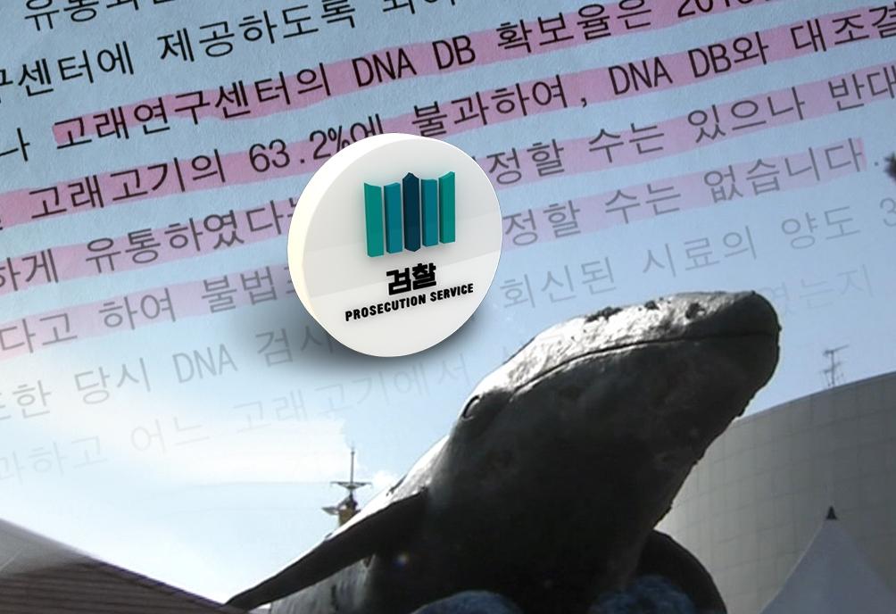 [와이파일] 고래, 그리고 검사...해명에 가려진 진실은?