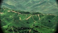 백두산 삼지연에서 금강산 고성까지...위성 데이터로 본 북한 산림훼손 실태