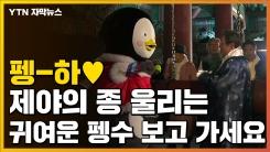 """[자막뉴스] 제야의 종 울린 펭수...""""새해에도 함께해"""""""