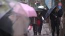 [날씨] '소한' 전국 겨울비...미세먼지 점차 해소