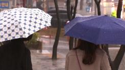[취재N팩트] 12월 적설 역대 최저...소한 추위 대신 겨울 호우