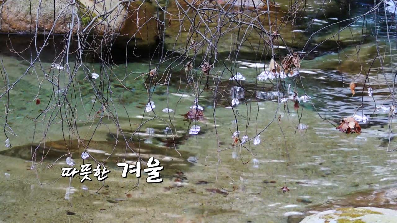 [영상] 따뜻한 겨울