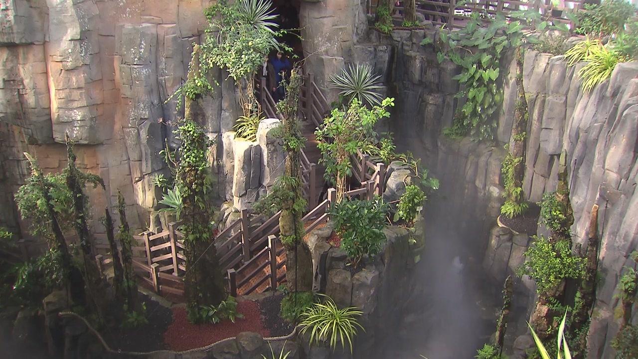열대 수목 한자리에...거제 정글돔 개장