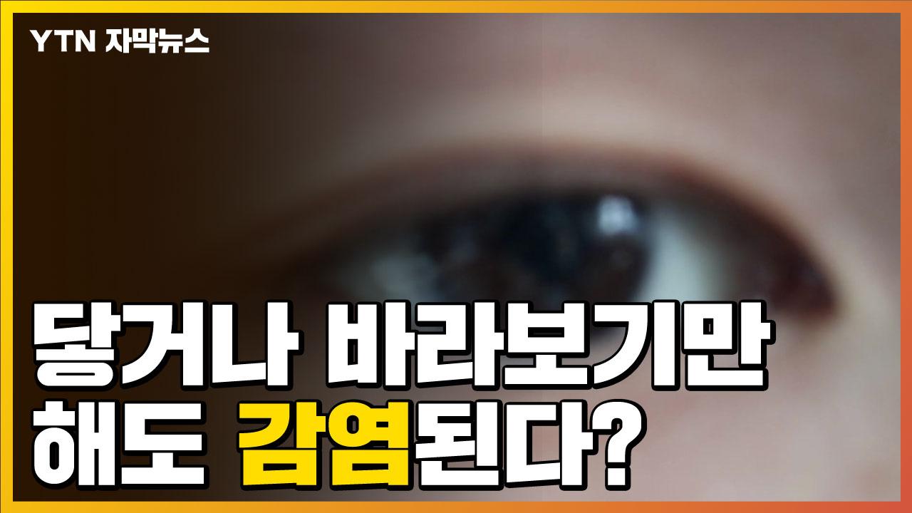[자막뉴스] 닿기만 해도 바라만 봐도 감염된다?