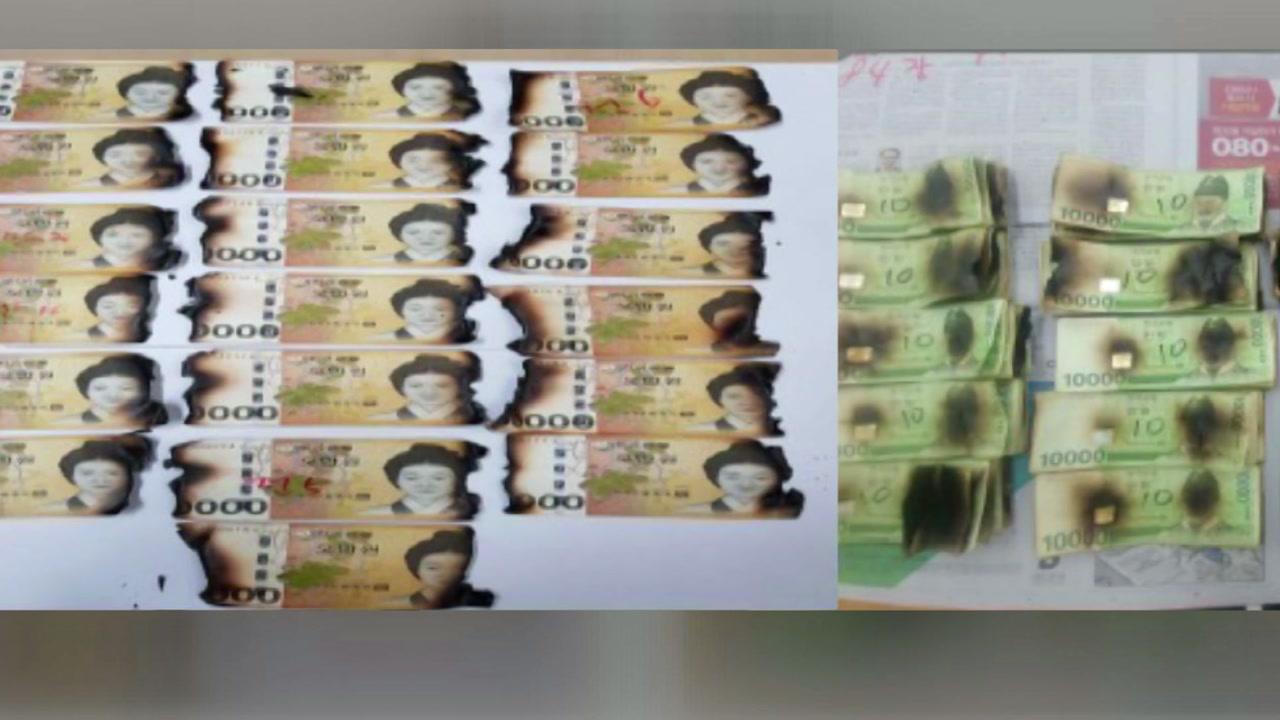 지폐 소독하려했는데...180만 원이 95만 원으로
